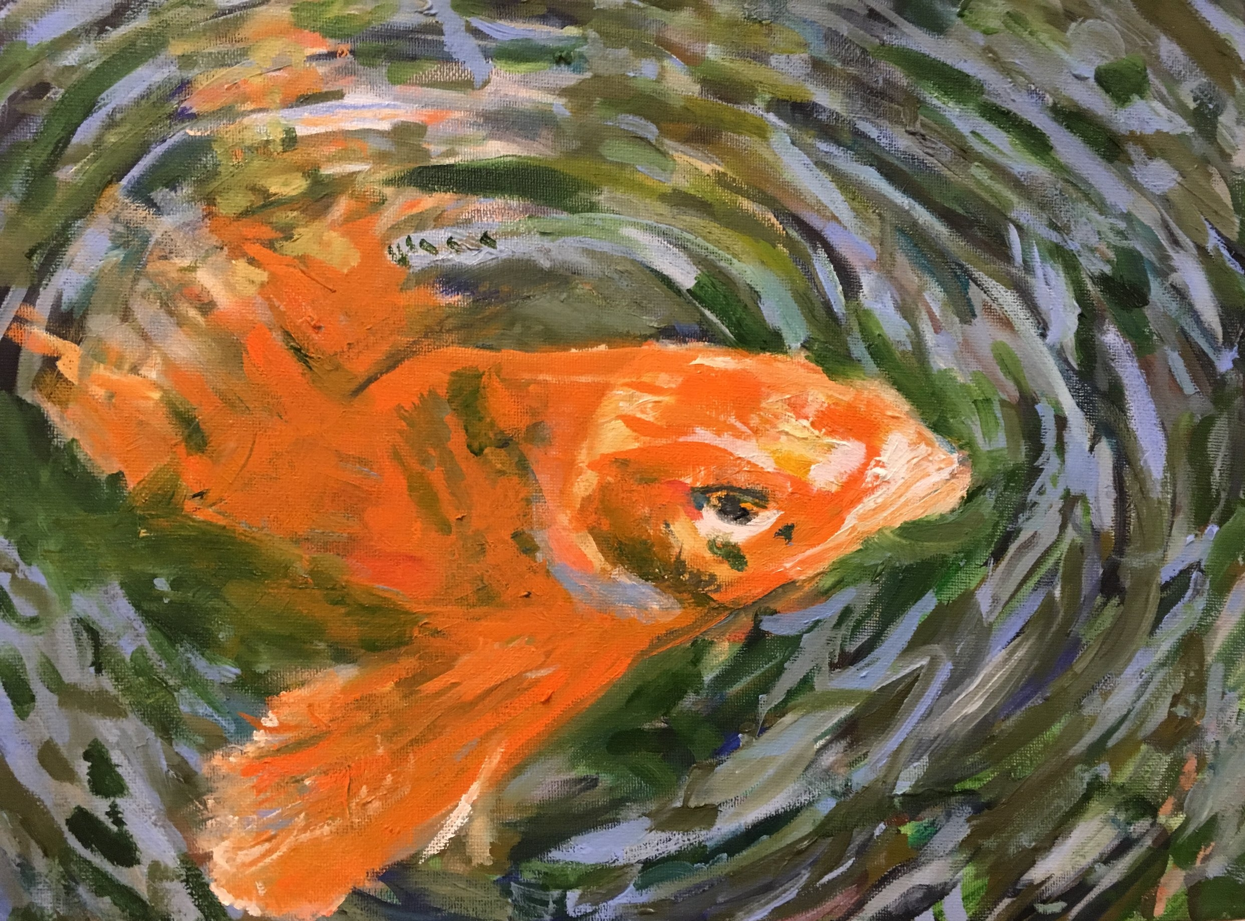 Fish in Pond