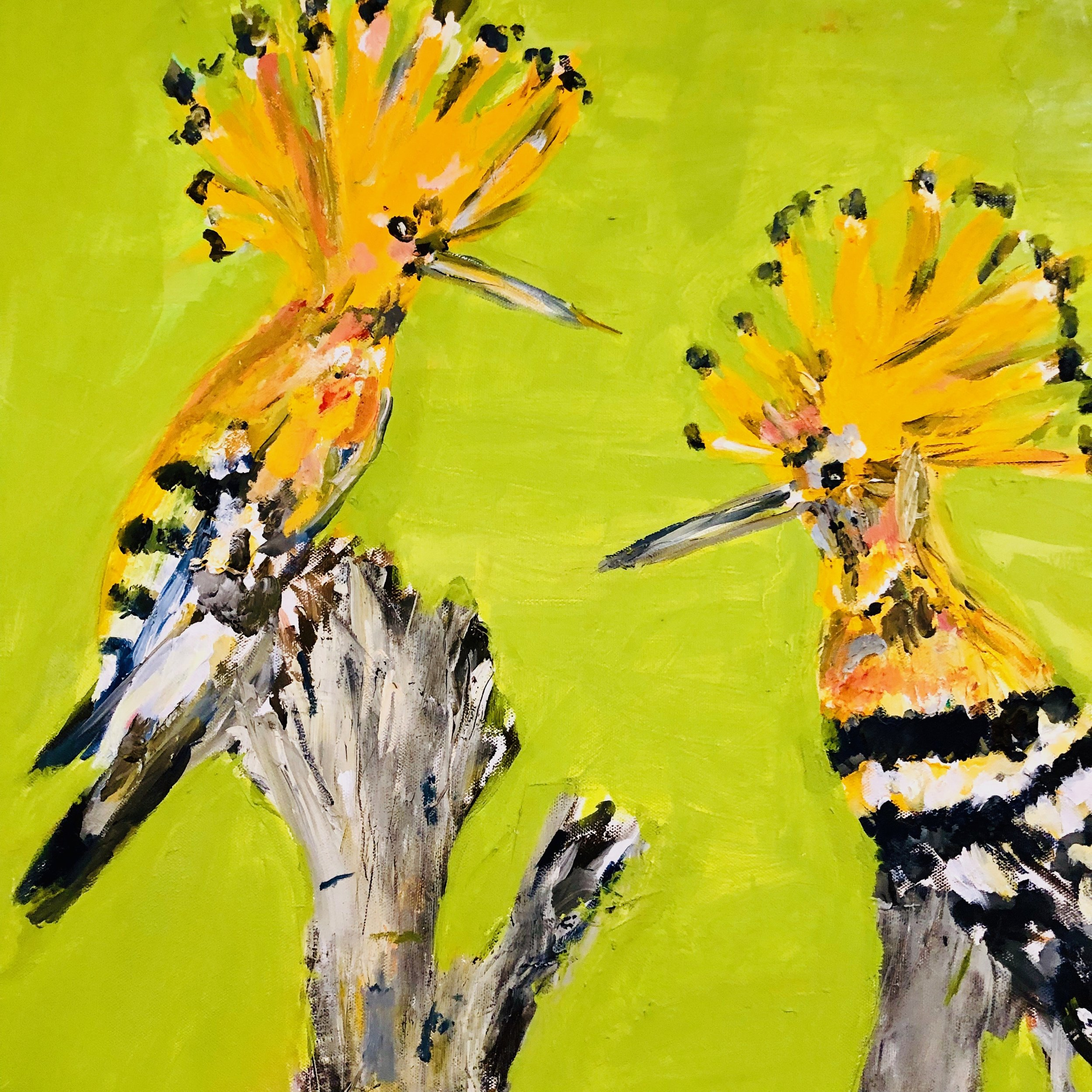 Two Hoopoes Resting