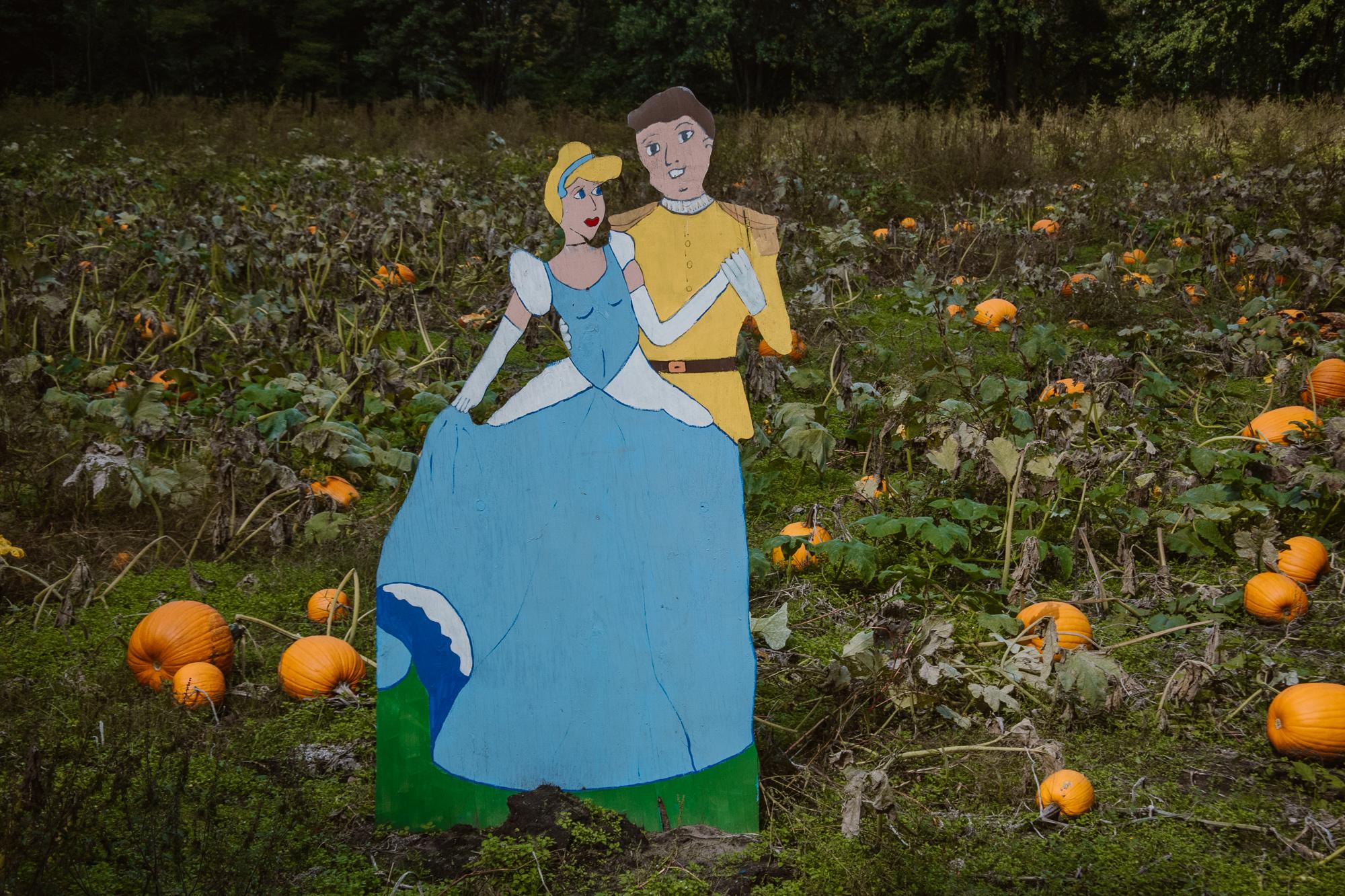 bethke-farms-pumpkin-patch-grand-haven-michigan (7).jpg