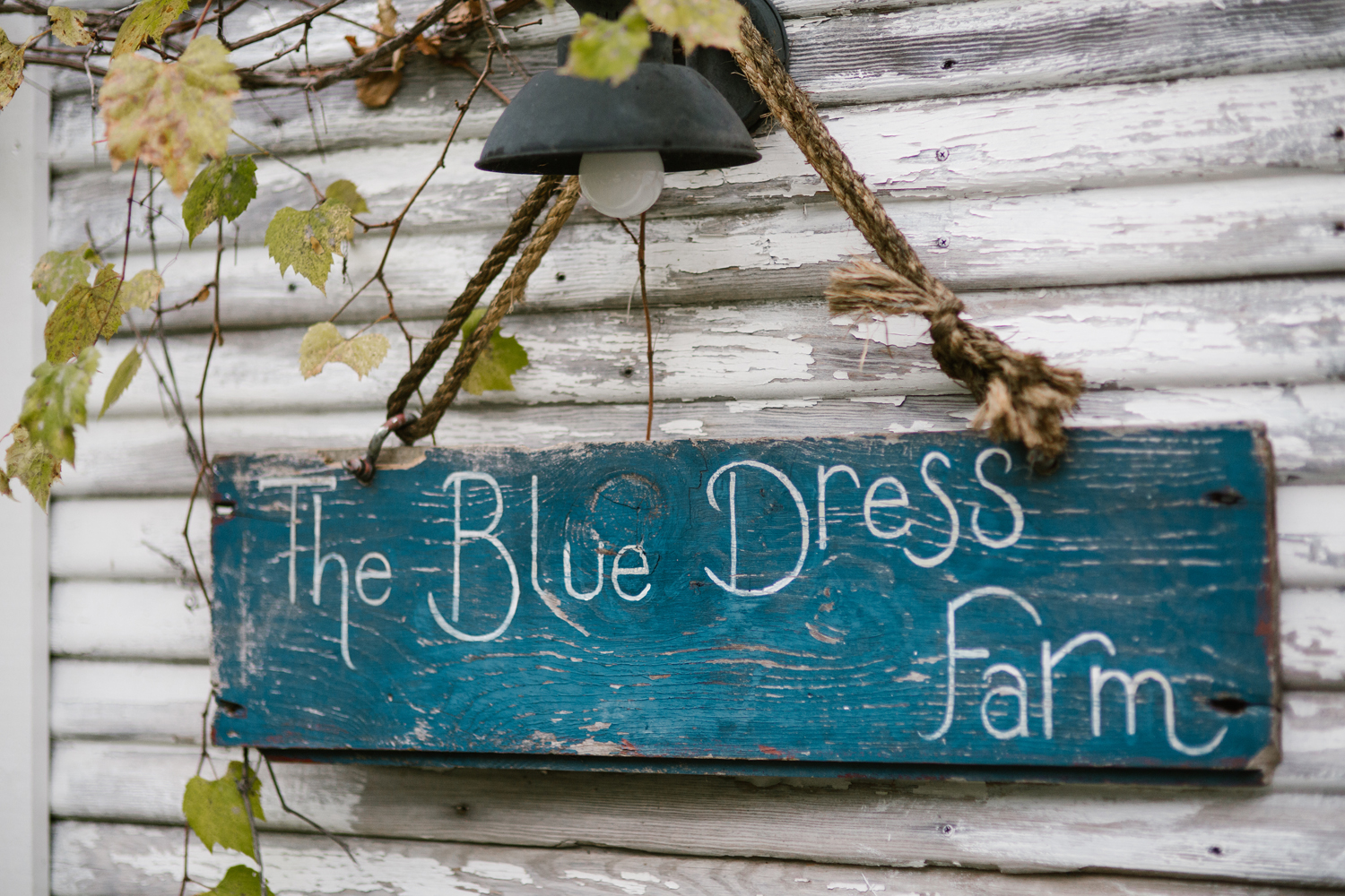 blue-dress-barn-benton-harbor-michigan-fall-wedding (1).jpg