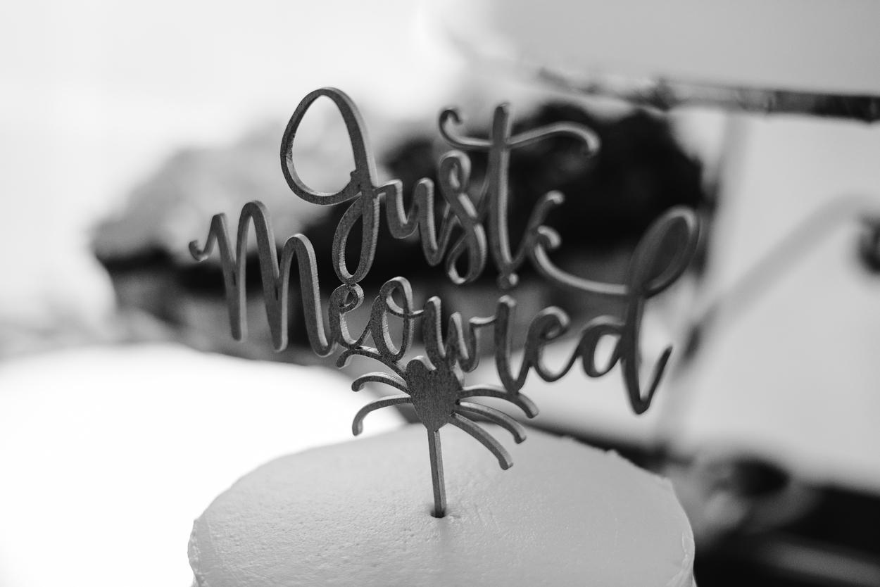 Detroit-Michigan-Backyard-Wedding-Sydney-Marie (77).jpg