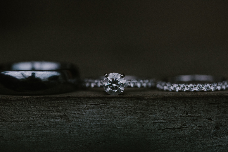 goldner-walsh-greenhouse-wedding-detroit-michigan-photographer (121).jpg