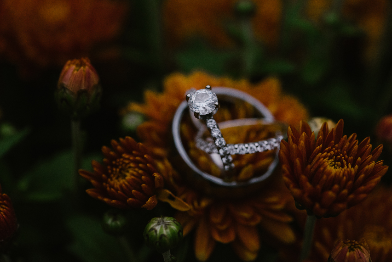 goldner-walsh-greenhouse-wedding-detroit-michigan-photographer (122).jpg