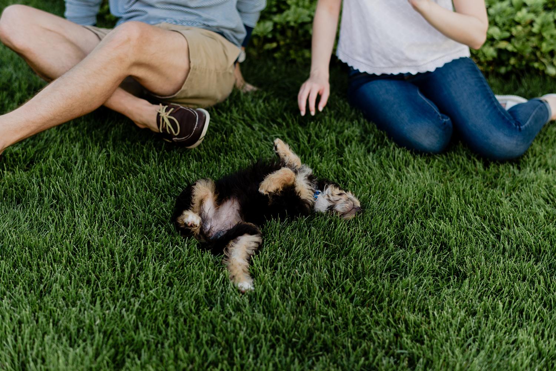 grand-rapids-michigan-engagement-with-dog (13).jpg