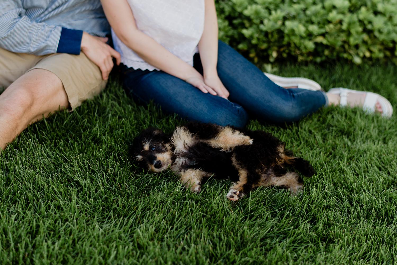 grand-rapids-michigan-engagement-with-dog (17).jpg