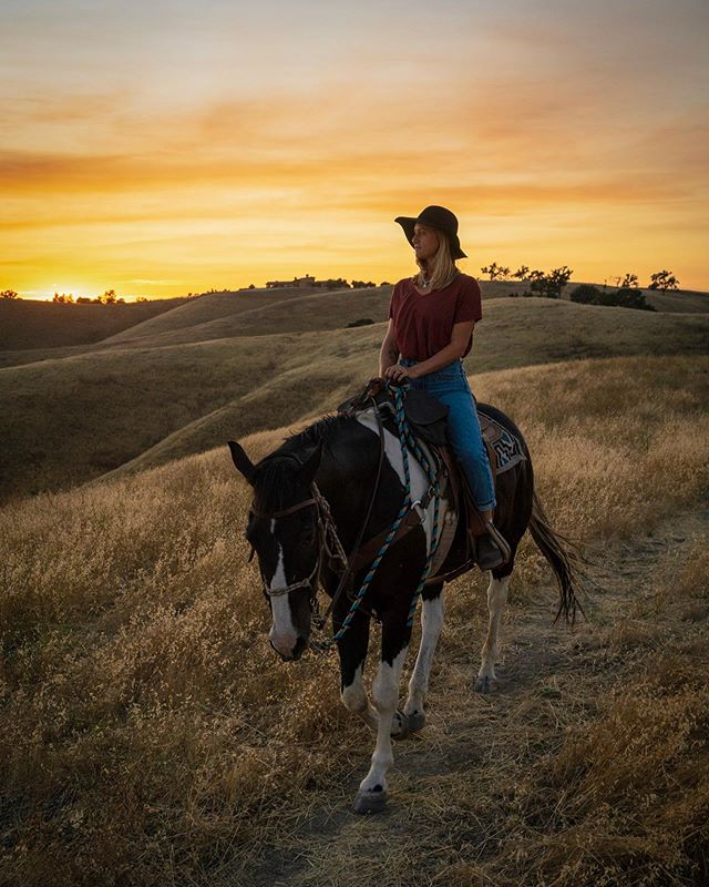 potentially the best way to end a day. strolling through golden fields on horseback. california, you never disappoint. #SLOCAL @slocal