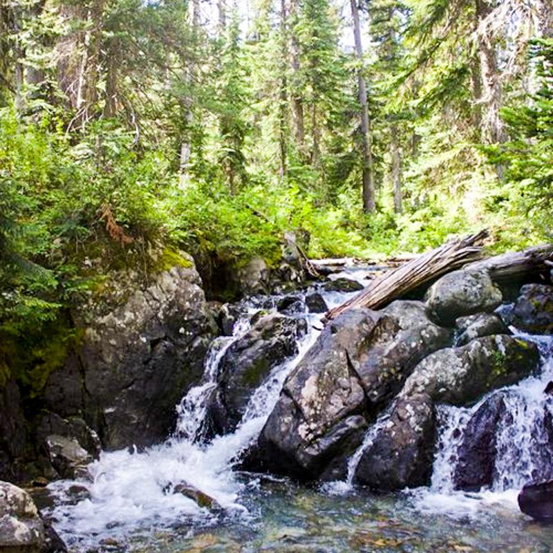 Tenquille+Creek.jpg