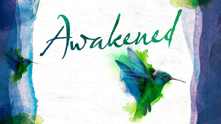 Awakened YV cover art .jpg