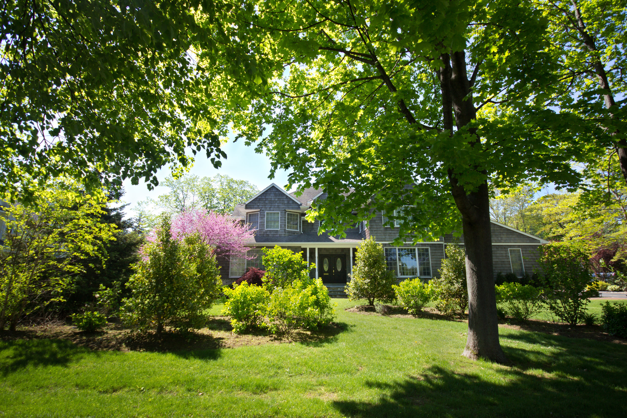 5 Fast-Growing Shade Trees from Our Wholesale Nursery in the Ulster County, NY, Area