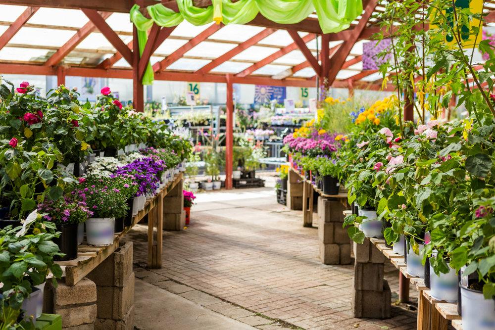 Stunning garden center in Sussex County NJ