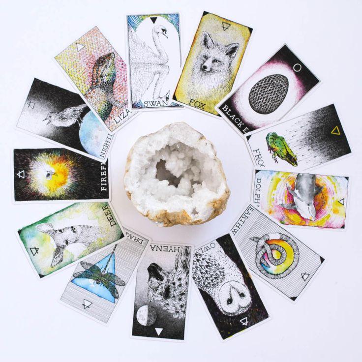 WIld unknown tarot sarasota metaphysical psychic reading florida wild ginger apothecary