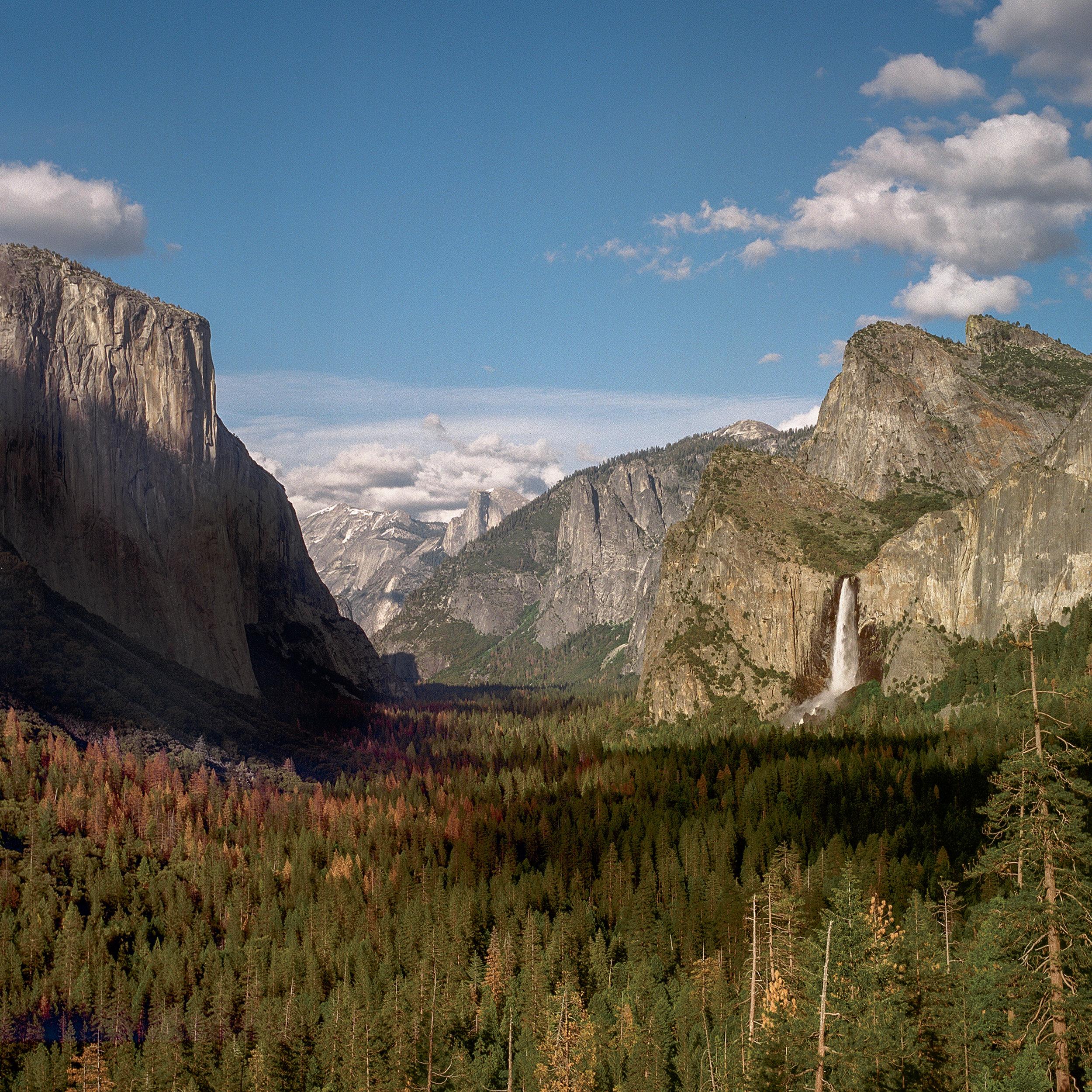 TrevorBaum_Landscape-3.jpg