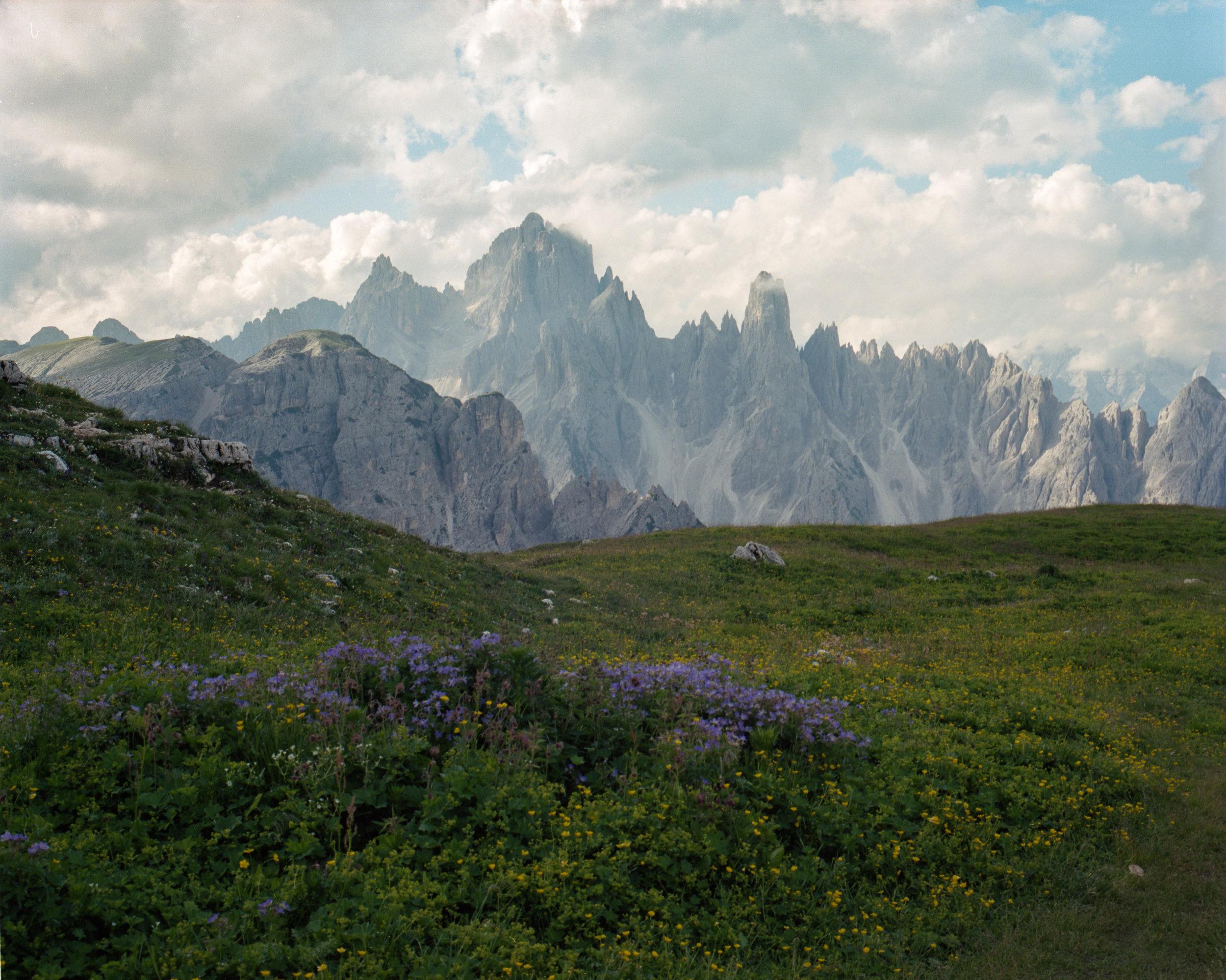 TrevorBaum_Landscape-14.jpg
