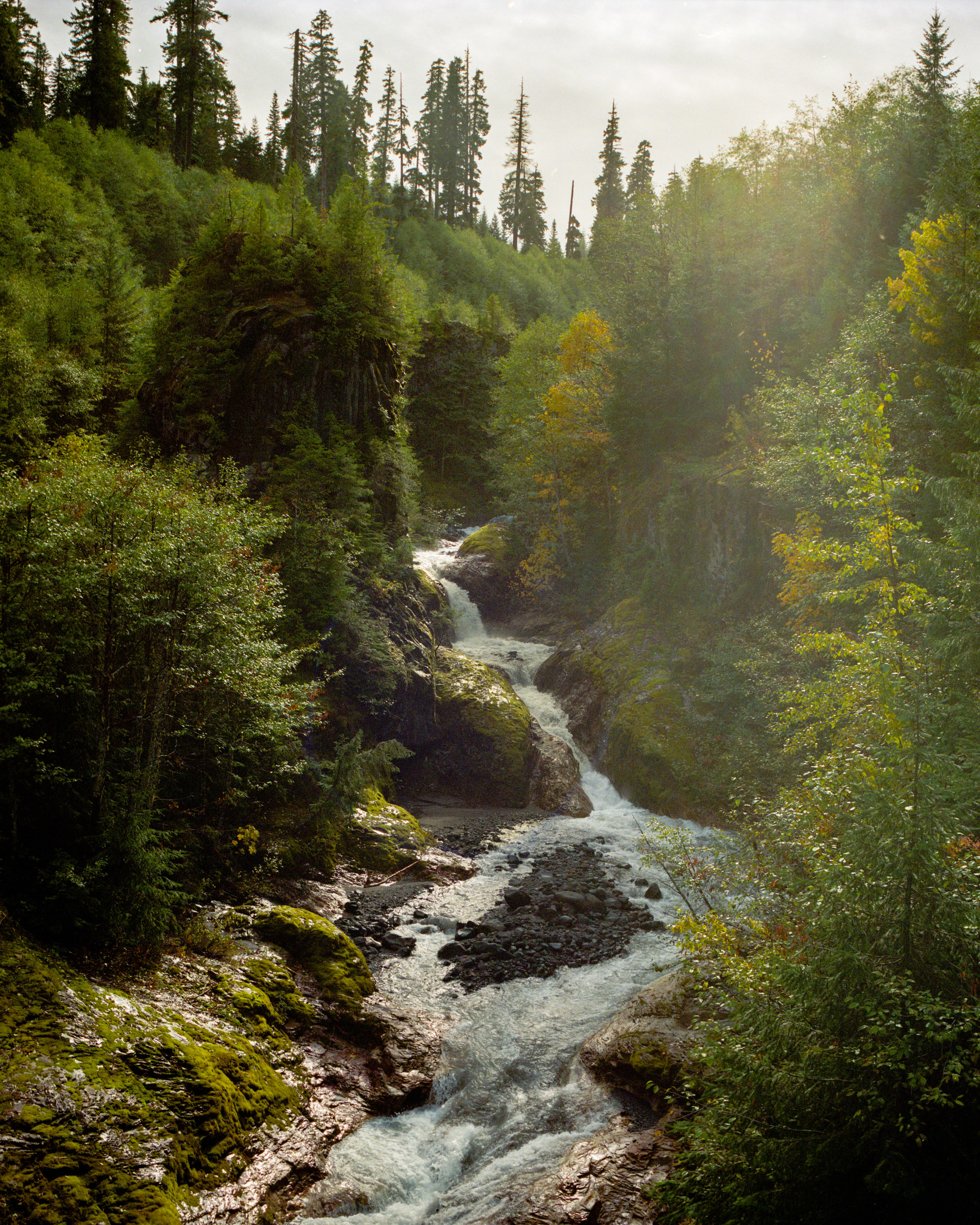 TrevorBaum_Landscape-25.jpg