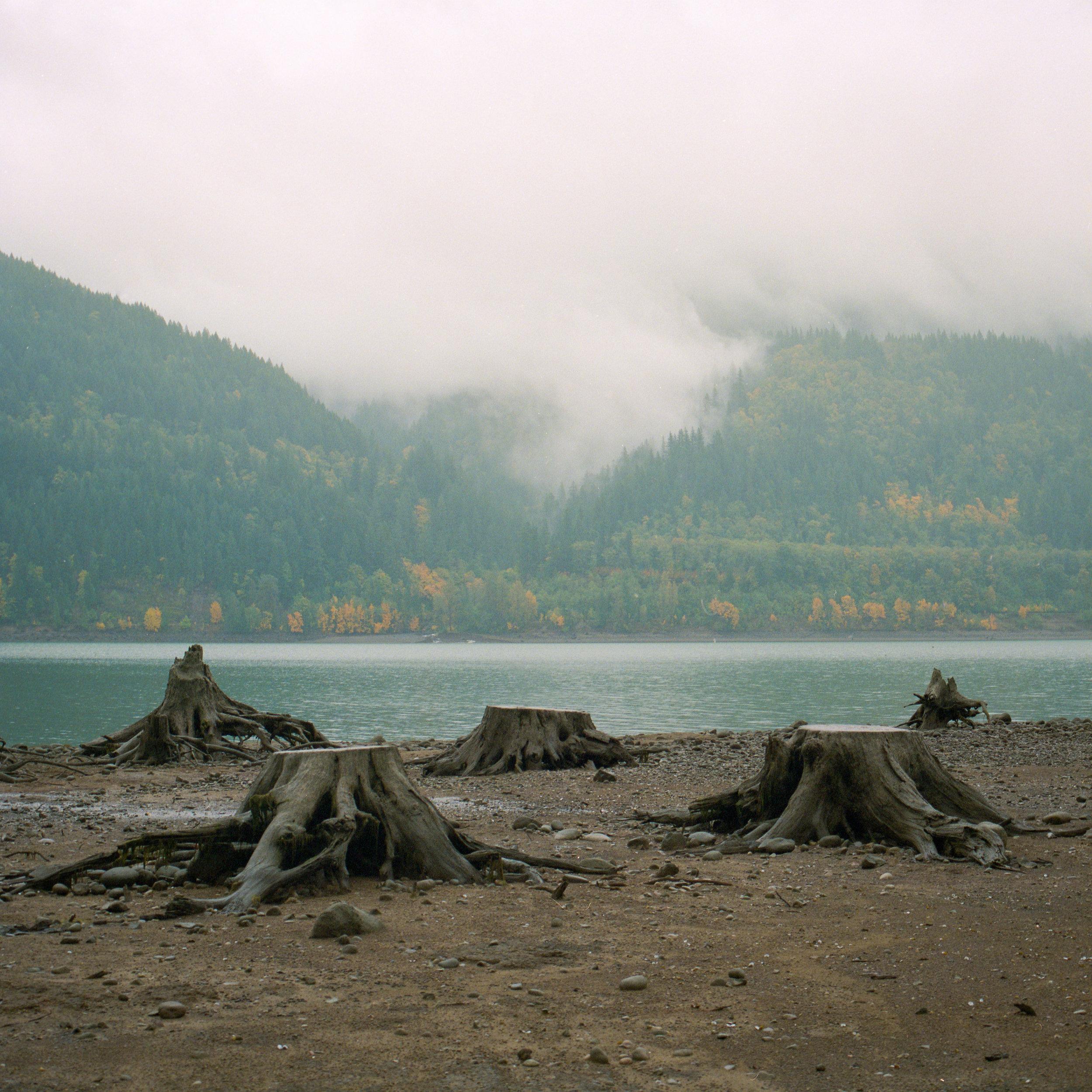 TrevorBaum_Landscape-26.jpg