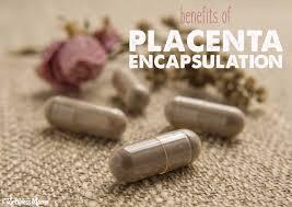 placenta caps.jpeg