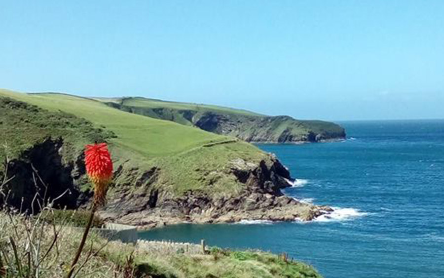 Play Therapy in Cornwall