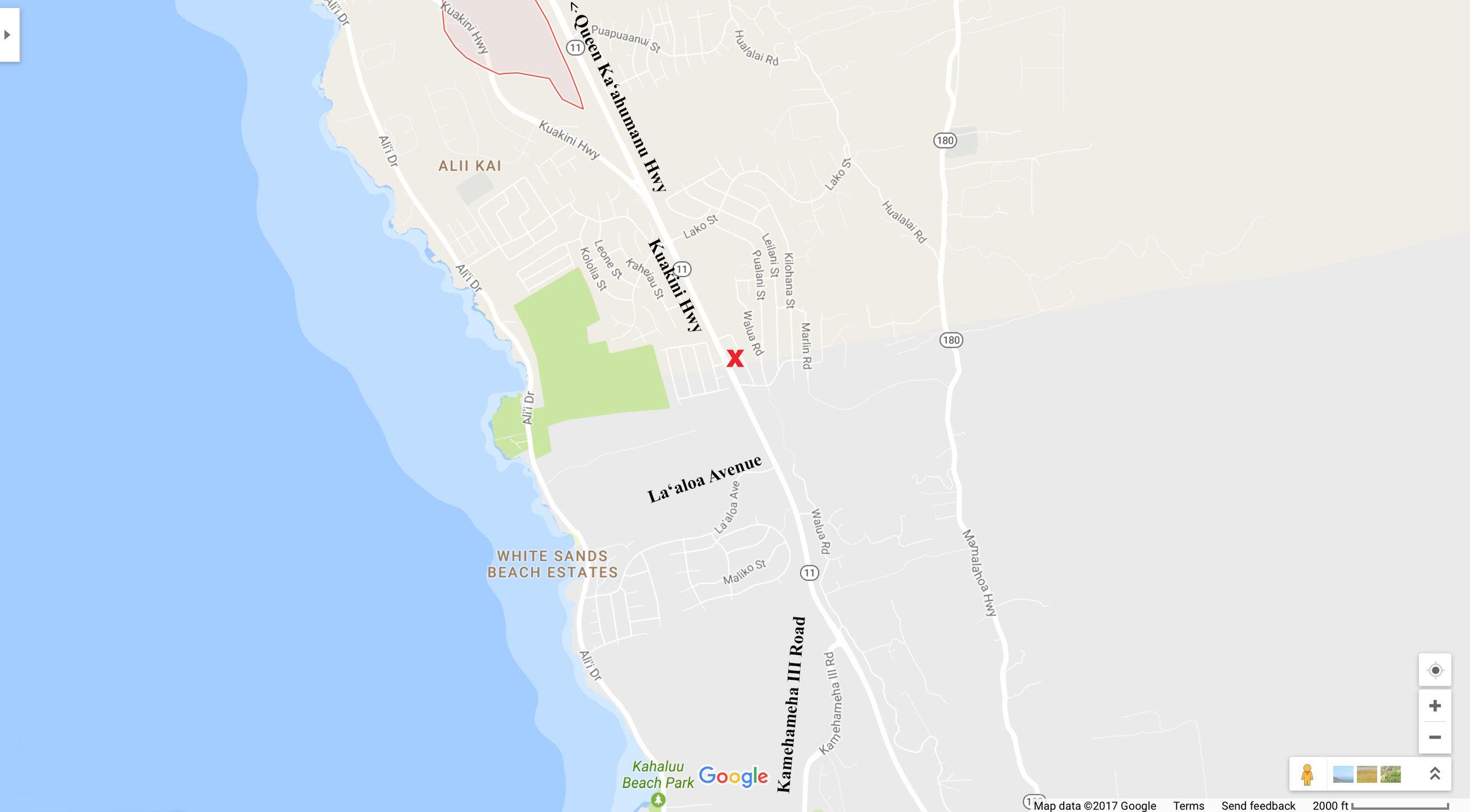 Google Maps Snap 2