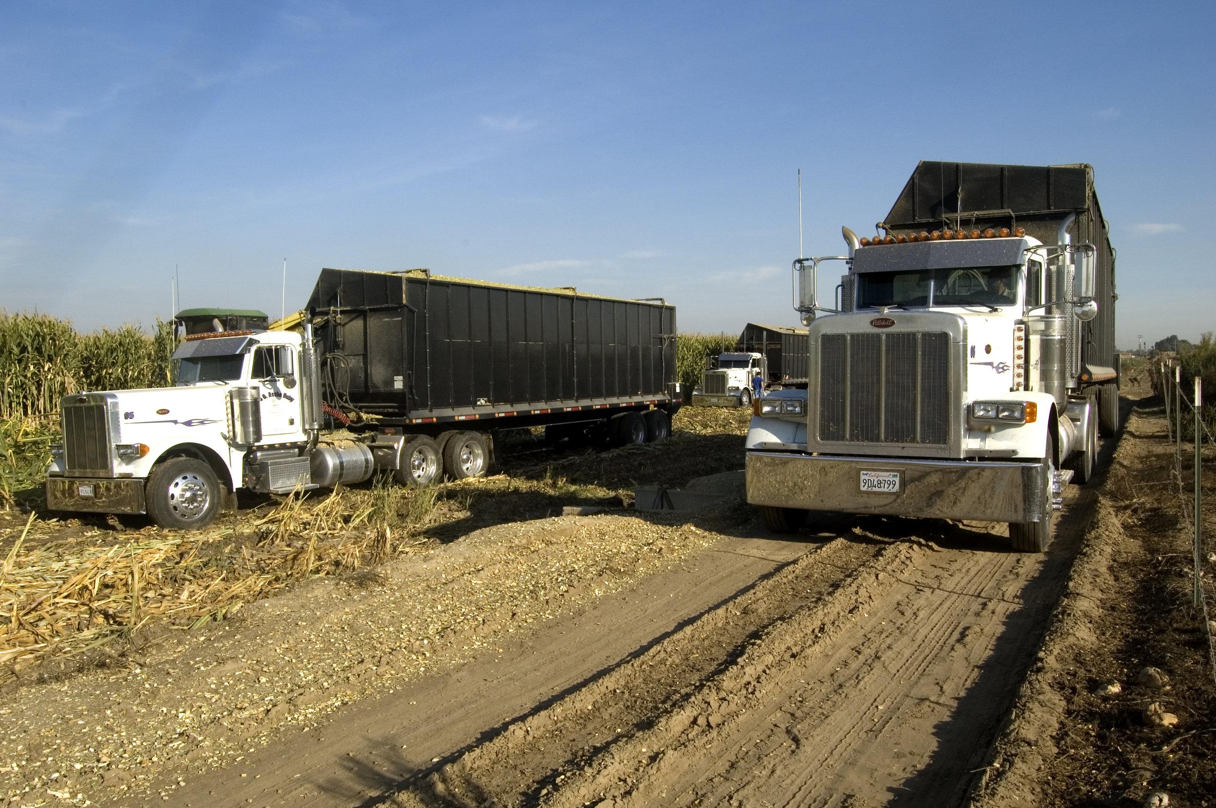 silage trailers.jpg