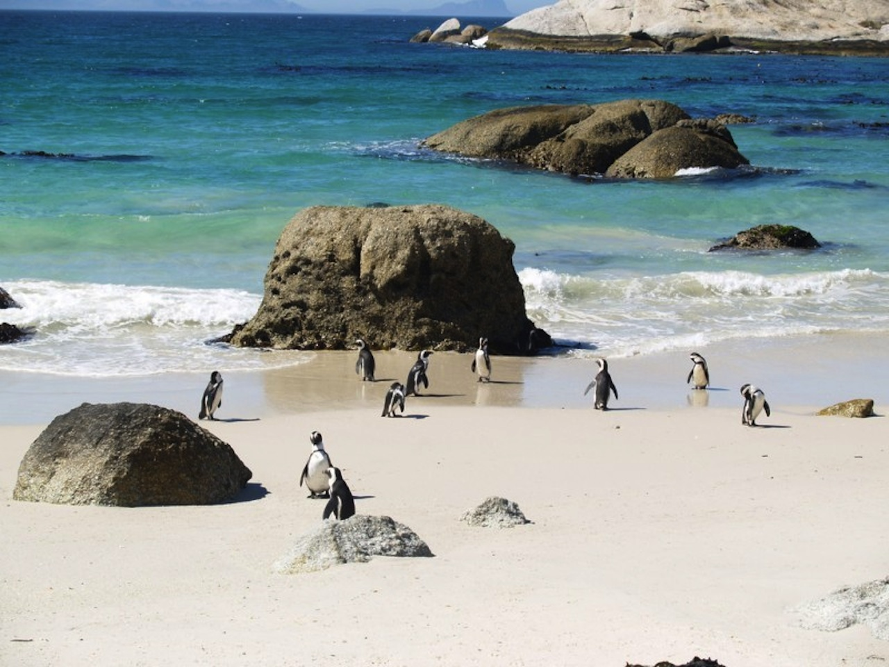 best_beaches_in_cape_town.jpg