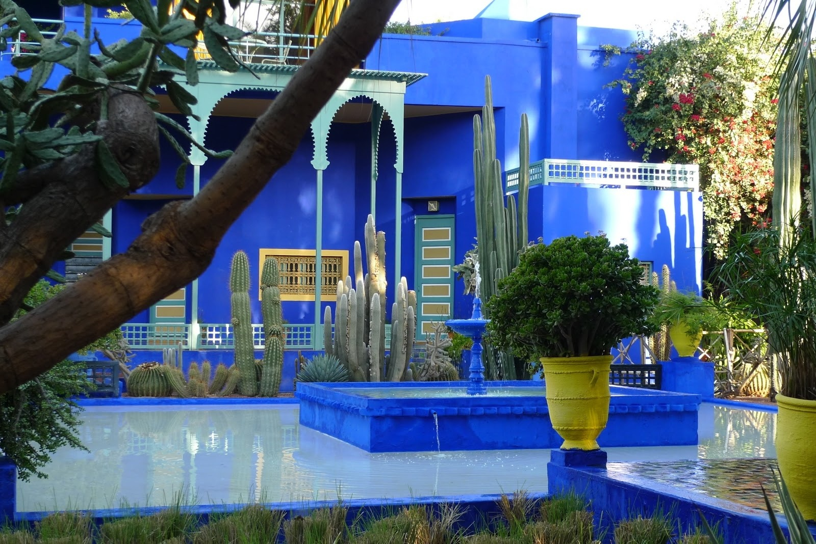 majorelle garden and YLS museum