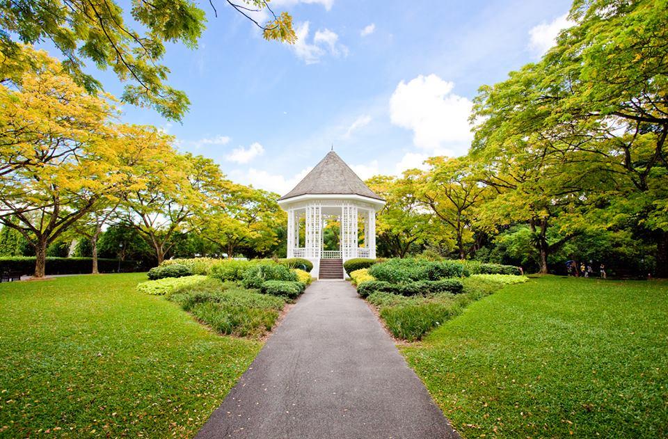 botanic gardens.jpg
