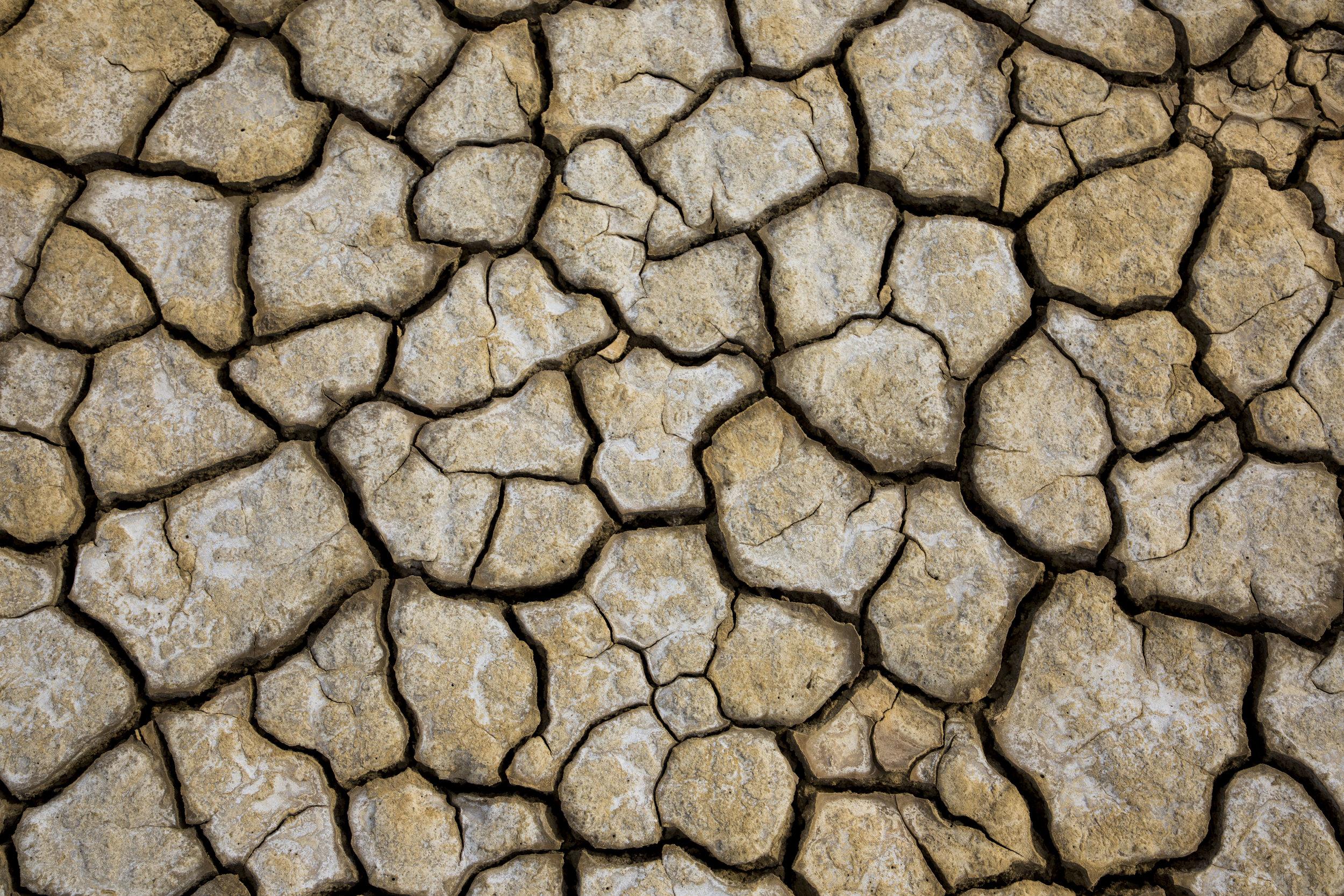 Cracked Earth 8.JPG