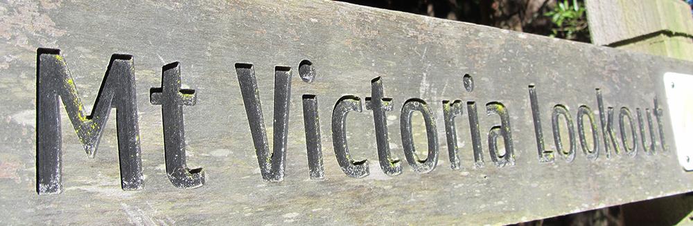 Visit Mount Victoria Lookout