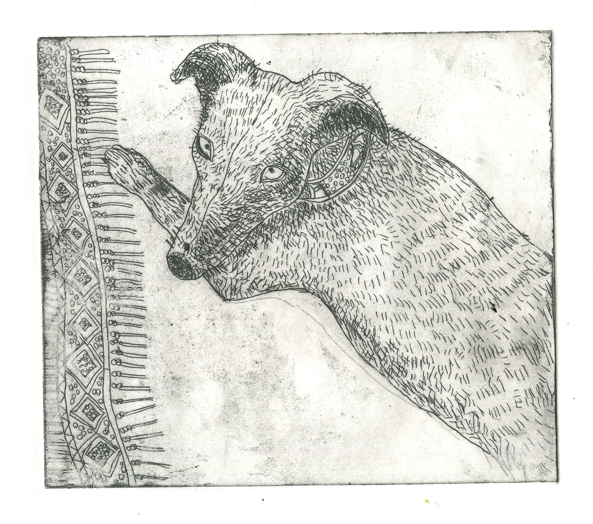 etching of piper.jpg