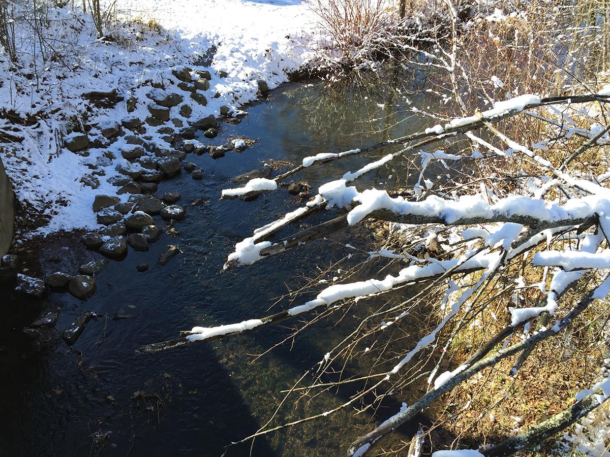 Nash Creek in Sparta, Michigan.