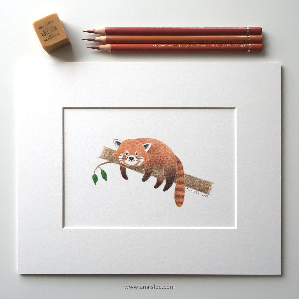 Anais's colored pencil art