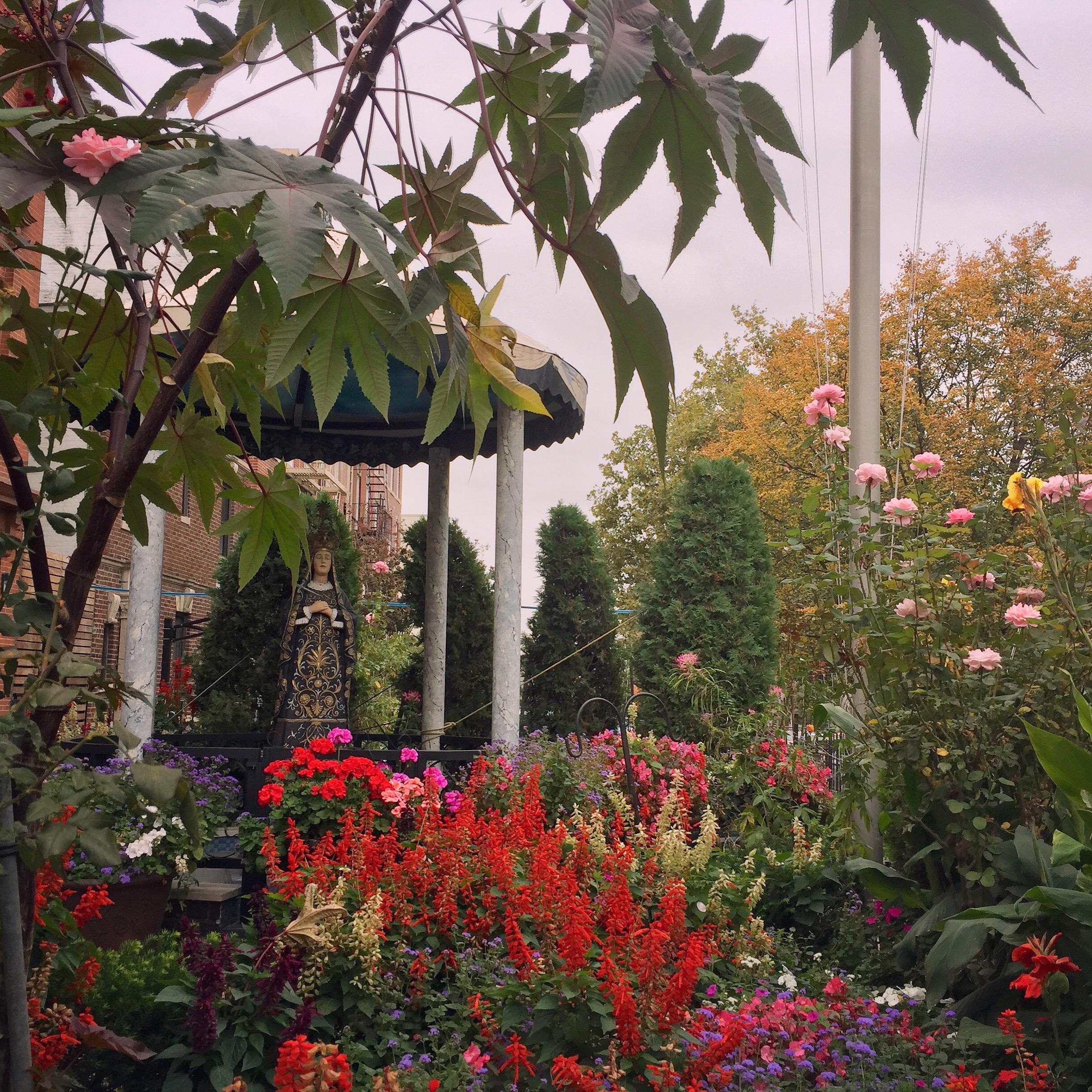 Carroll-gardens_CourtSt-social-club-garden_Bk.jpg
