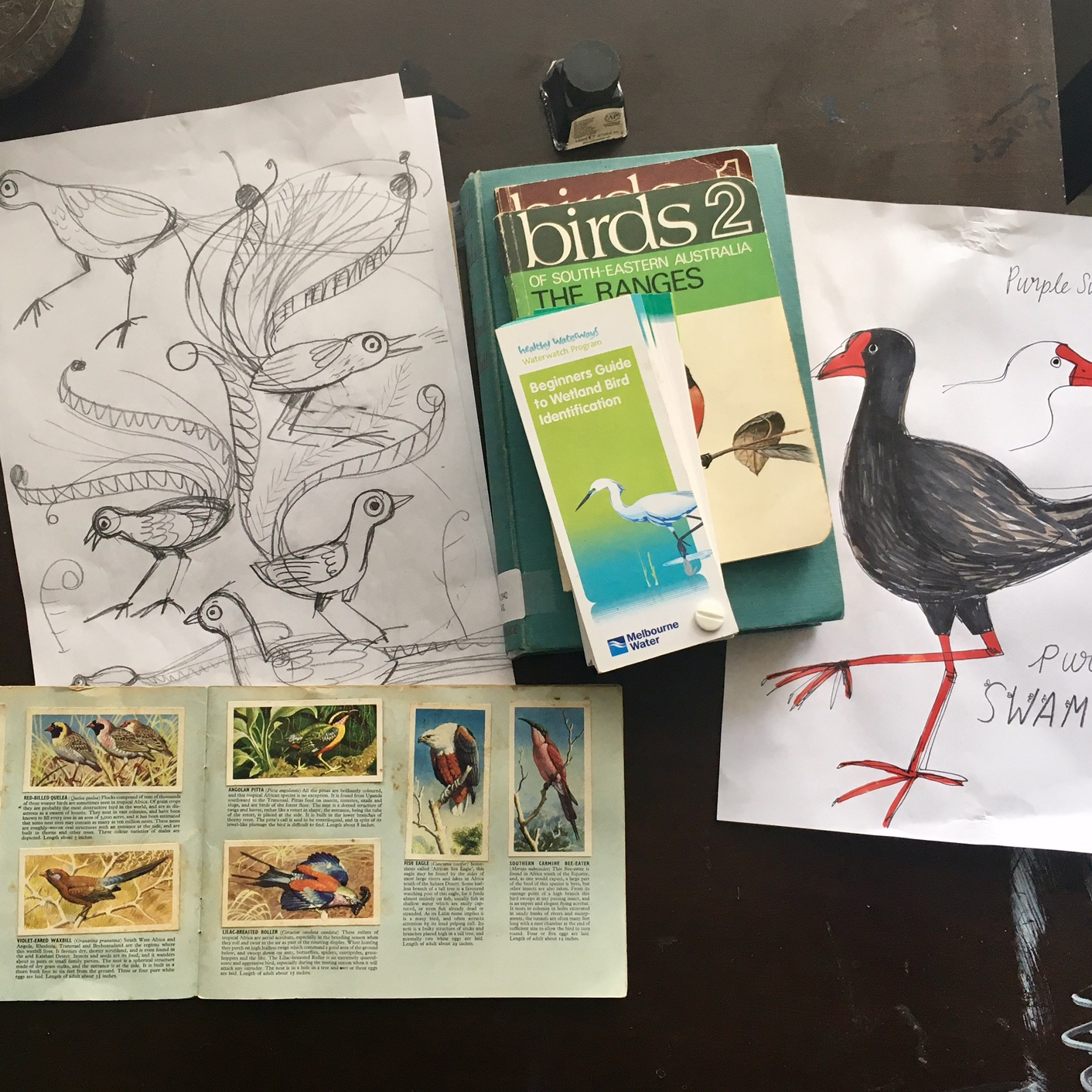 sarah allen birds.jpg
