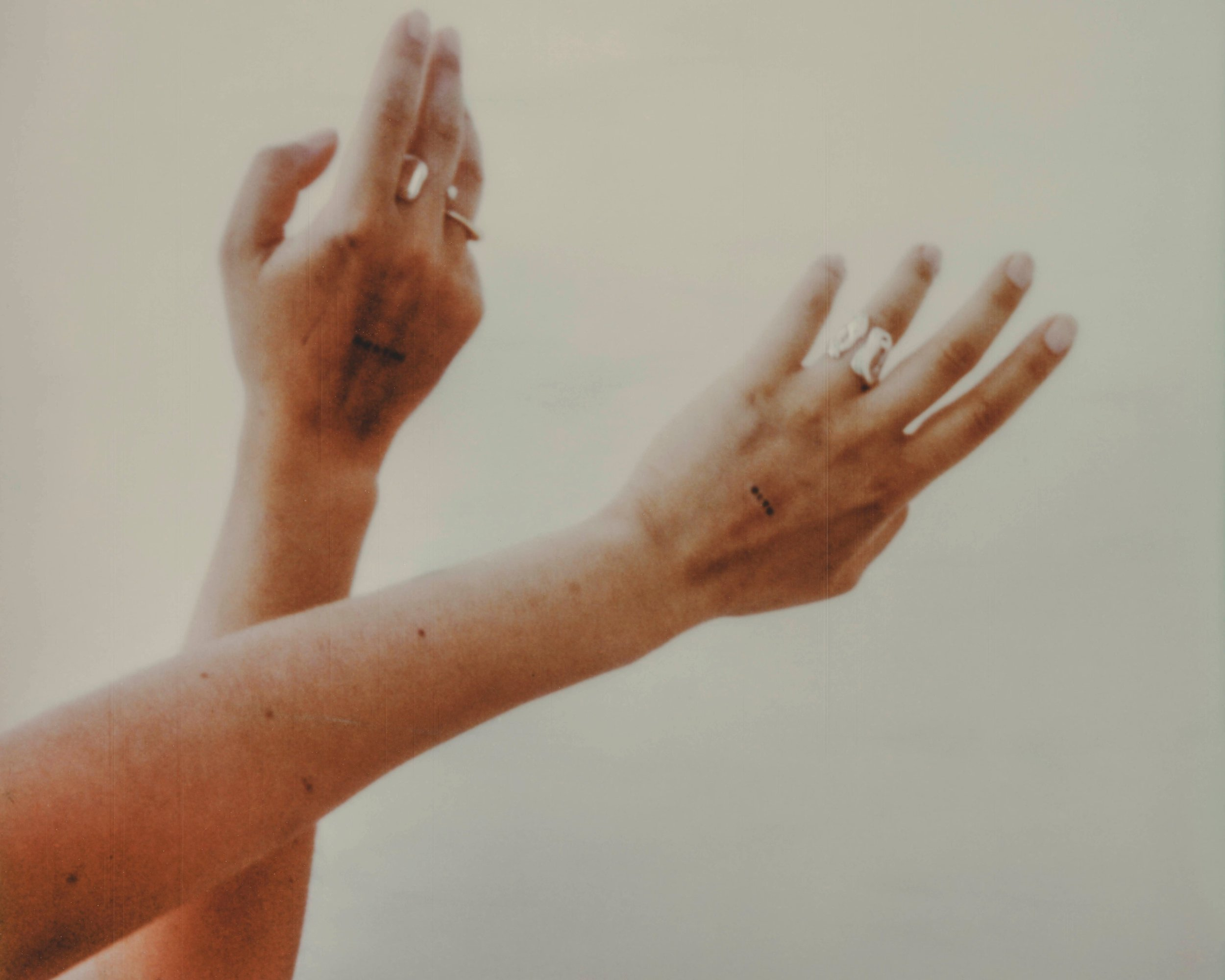 GARY FRANKS FOR ANNE DAHL / THE BOUNDLESS, OVERGROWN SIGNET & TEMRPORAL RINGS CAPTURED ON POLAROID