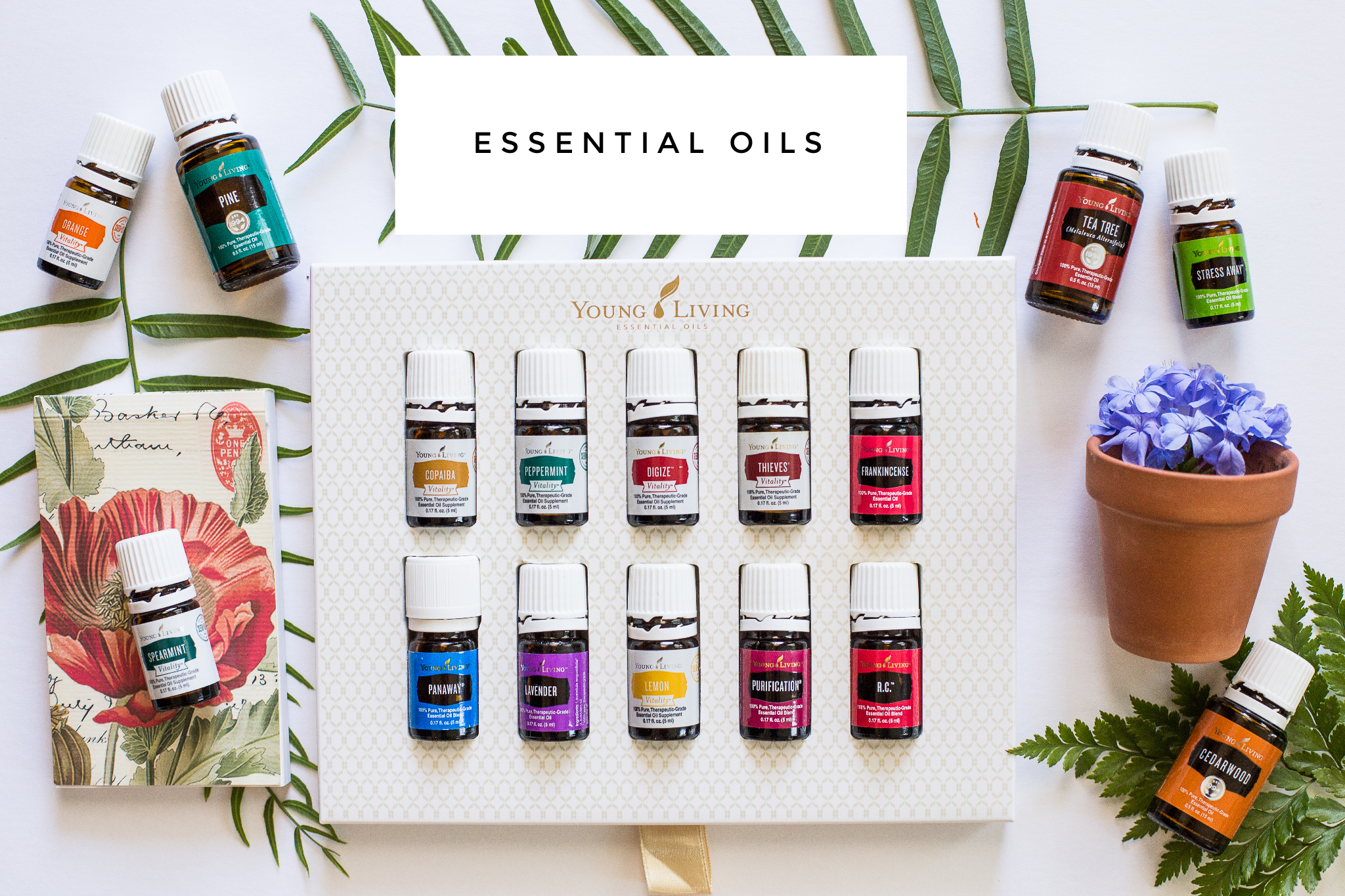 """Are you sick of me talking about oils yet? Hint: It probably won't stop ;) I am IN LOVE with this new, oily lifestyle. These are used for all kinds of support. Respiratory, immune, skin, etc. I incorporated them into my daily life and I find them so soothing to turn to. I can create a spa like atmosphere, or beauty care products with them, they are natural, safe alternatives to the chemicals that we use. By common sense you can figure out that this has to be better for you: to support your body vs damage its systems with harsh chemicals. Research the effects of our daily use products on hormones, our endocrine system, etc. Be proactive, and  feel the difference  :)I joined a team of oilers (is that what they are called?) when I bought my starter kit, and I have been blown away with the support, conversations, ideas, lifestyle sharing that they all do. My sister joined as well and she got so excited and said """"these are my people!"""" I feel the exact same way. It isn't """"normal"""" to throw away all of the chemicals in your home, or to consider food to be medicine, or to put oils on your feet every night. But I never wanted to be normal anyways."""