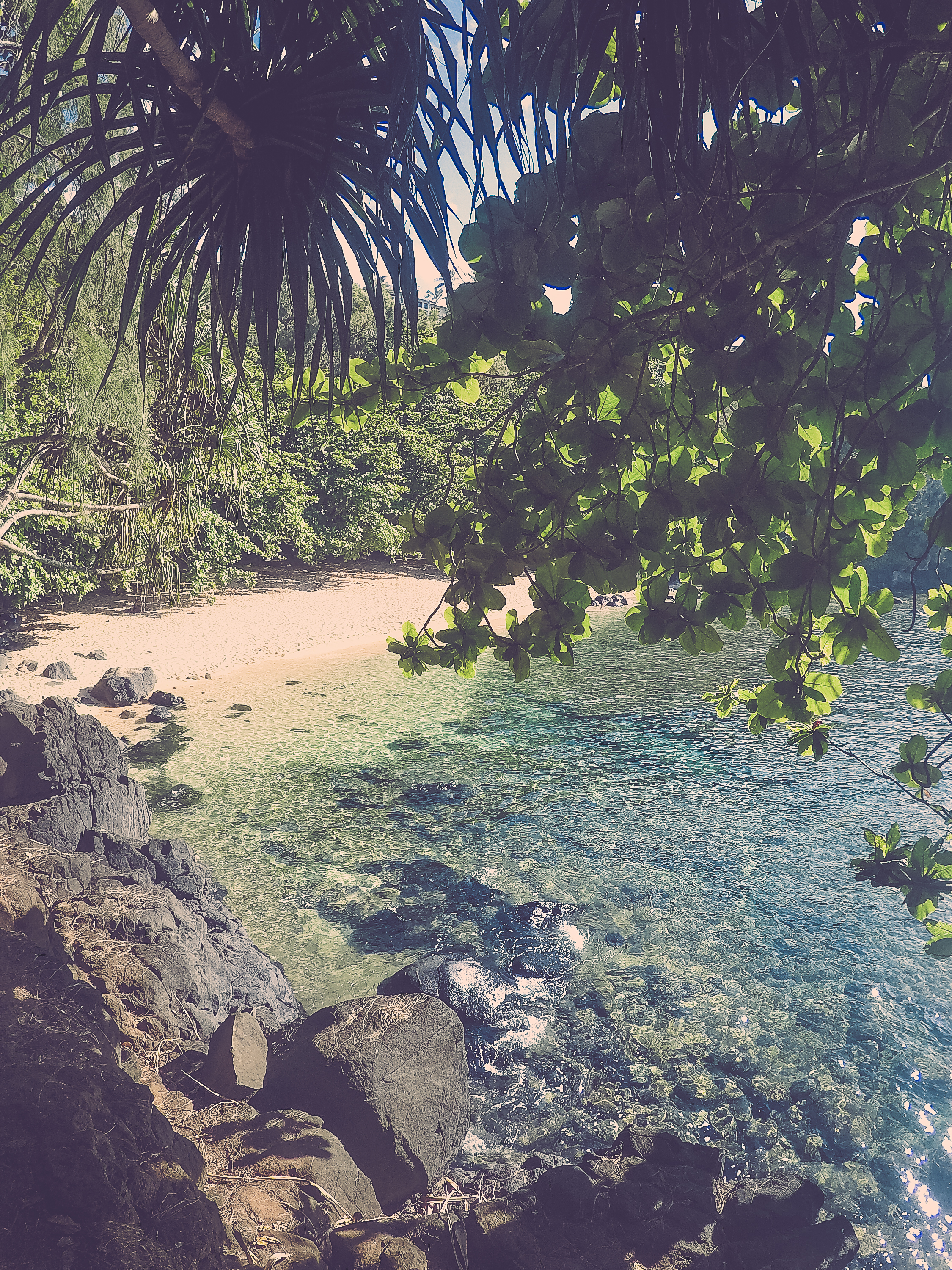 This is the same beach I mentioned before. This is just a go pro shot of the beautiful water. There is plenty of shade from the trees so you don't need to bring much down, just food, water, and snorkel gear :) Hike to the far end for our favorite spot that we swam on the entire trip (around the rocky ledge). If you watch the video below, you'll see the turtles and Riley diving down right here, it was so gorgeous!