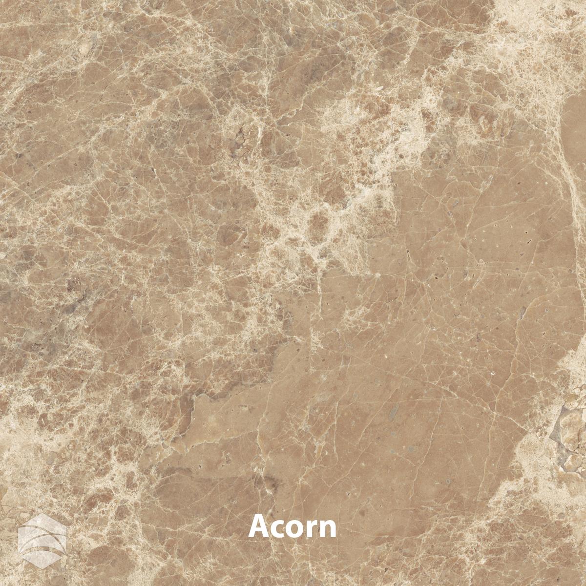 Acorn_V2_12x12.jpg