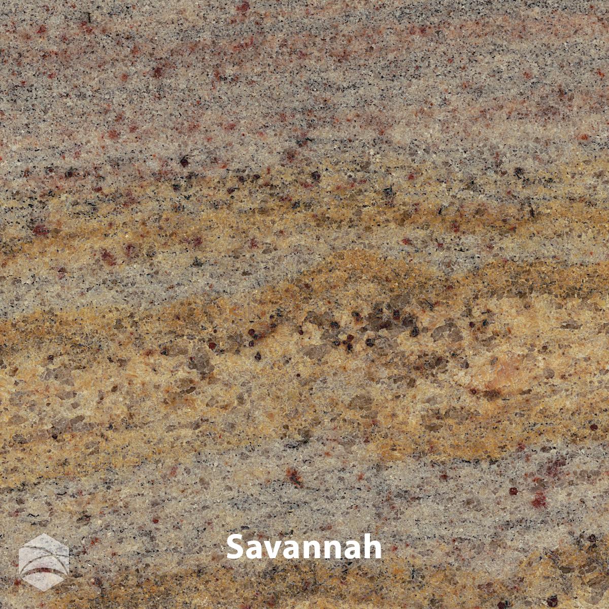 Savannah_V2_12x12.jpg
