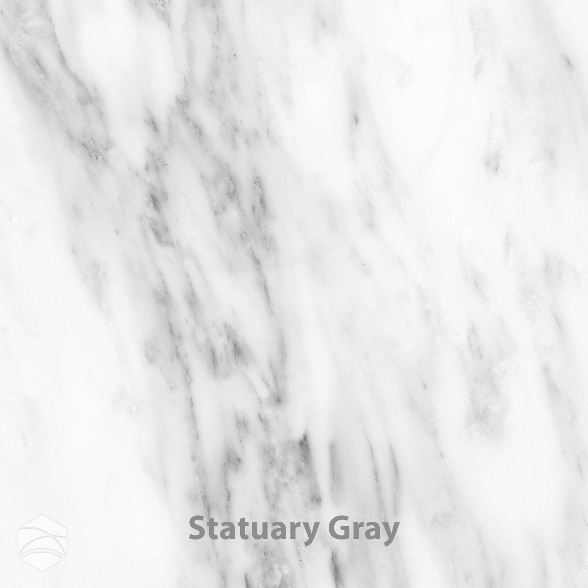 Statuary Gray_V2_12x12.jpg