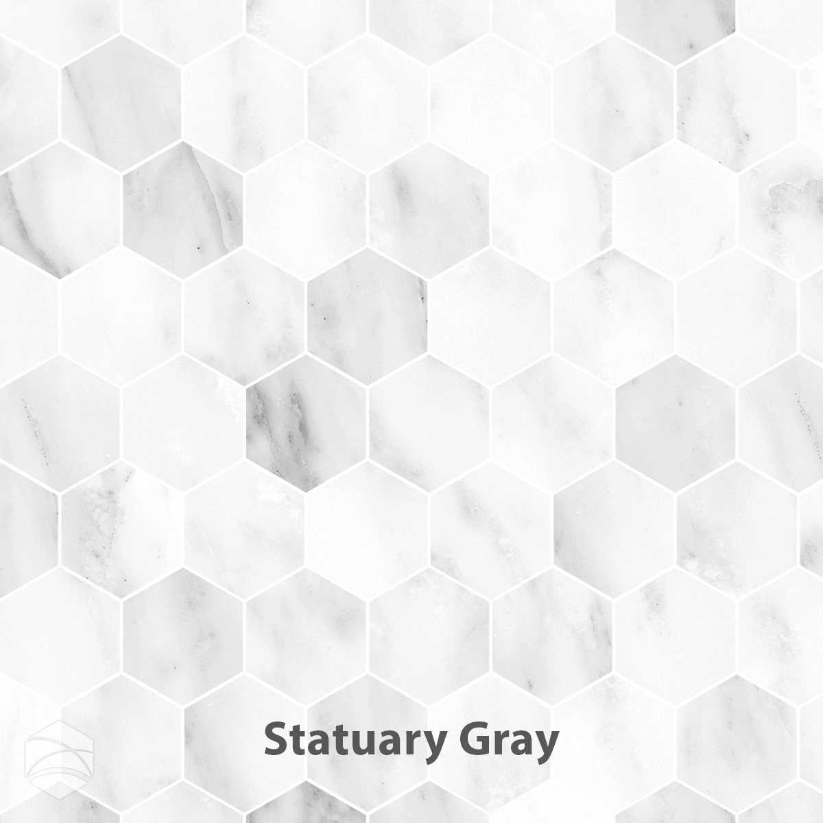 Statuary Gray_2 in hex_V2_12x12.jpg
