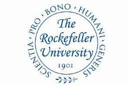 Rockefeller 1.JPG