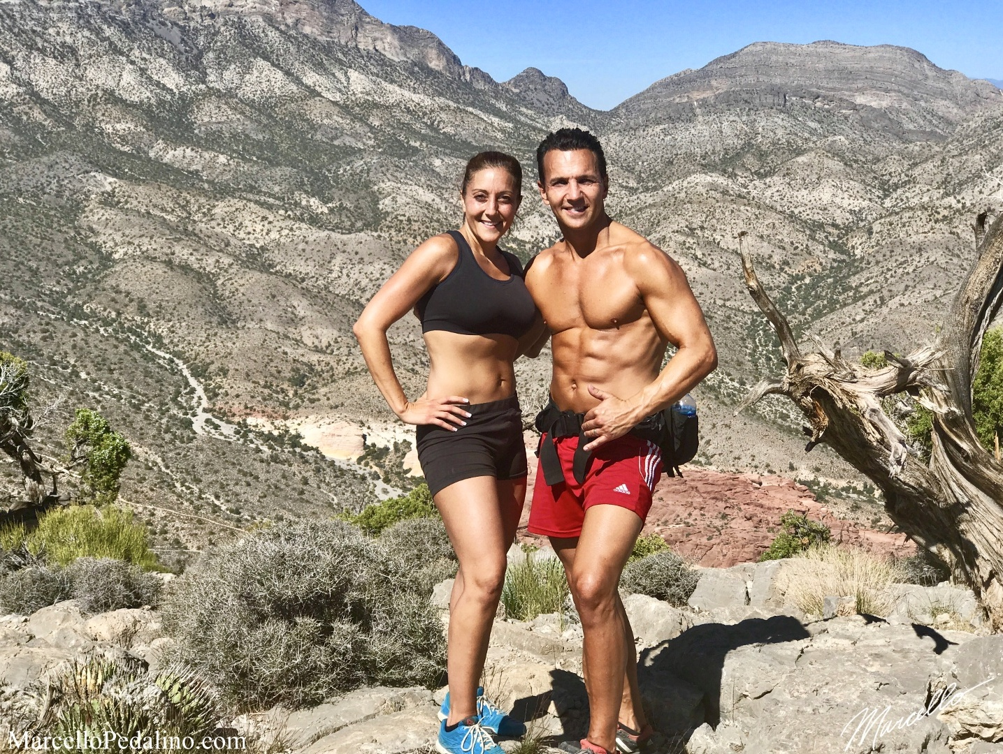Marcello Pedalino and Dr. Jill Pedalino.jpg