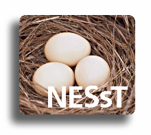 nesst_logo_220x200