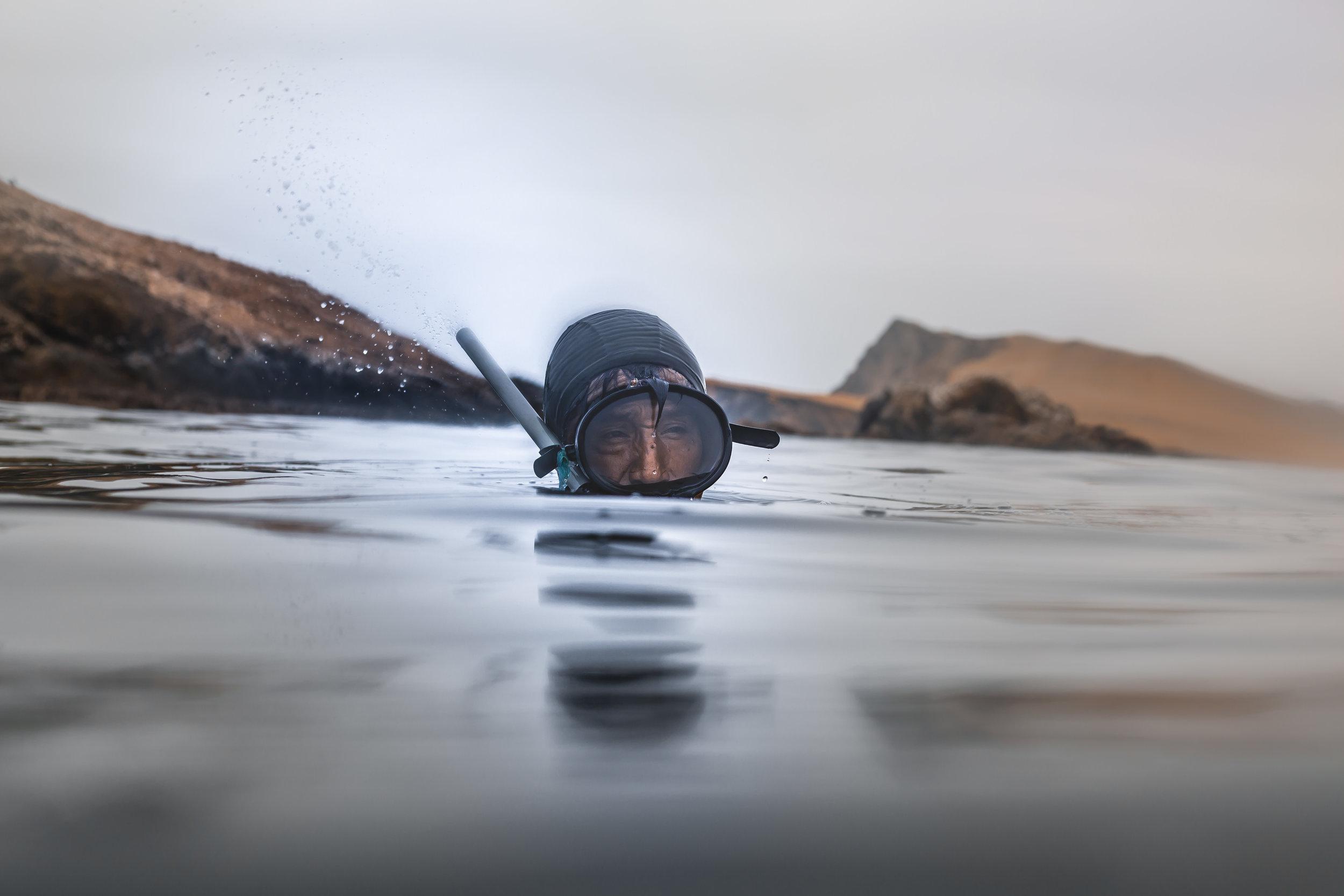 Paco, the Sea Lion.   Ana Sotelo for NESsT