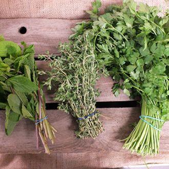 Fresh Herbs smaller.cacb59c4523d08080e61387cec35bccd.jpg