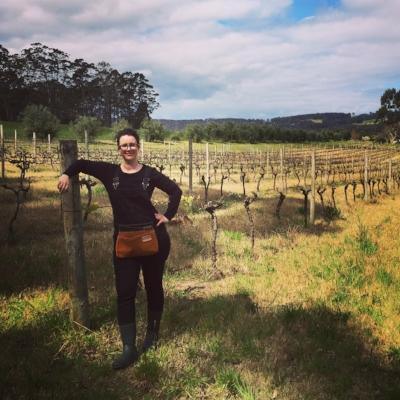 yoko vineyard (1).JPG