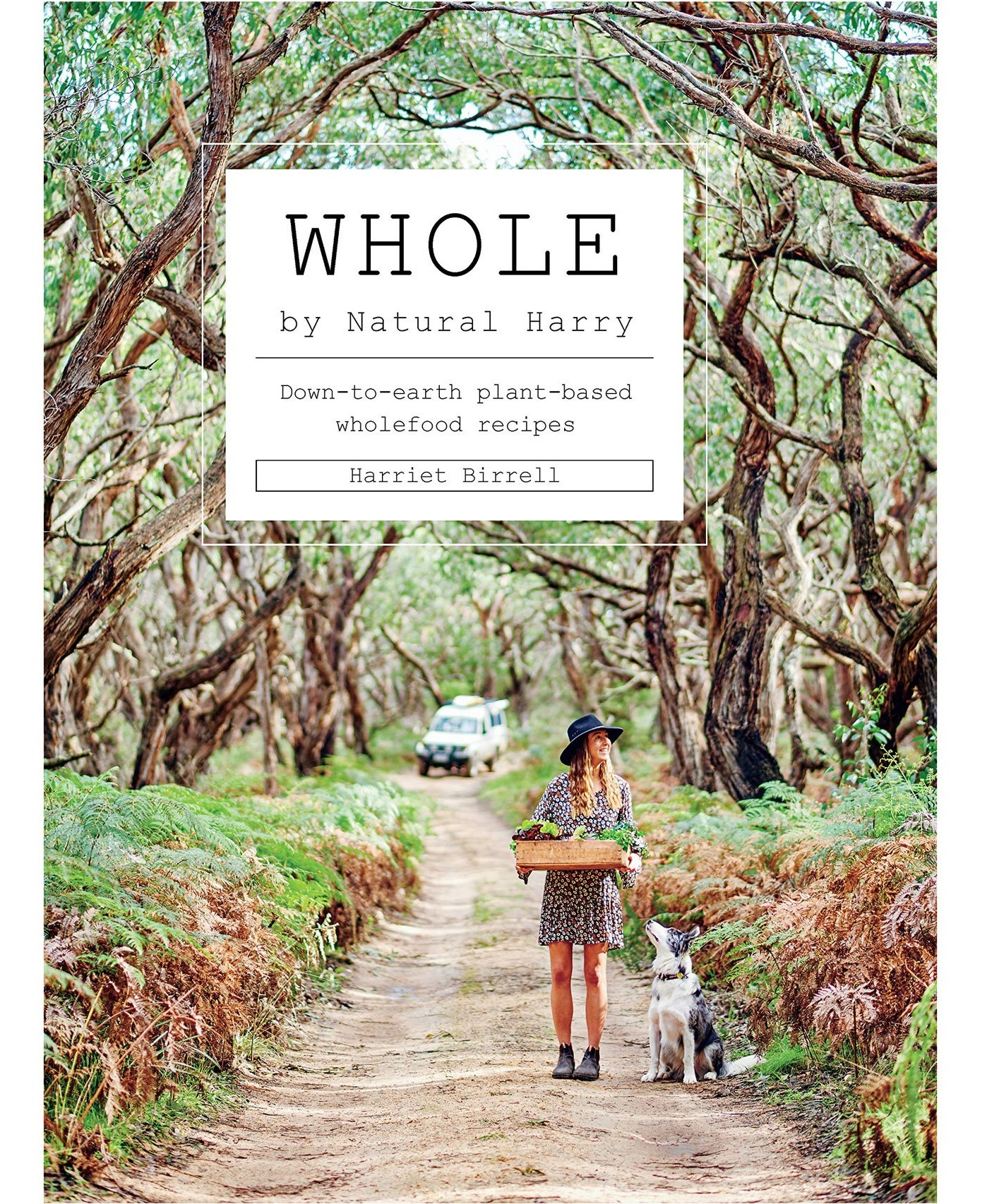 Whole+by+Harriet+Birrell.jpg