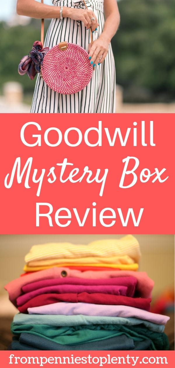 Goodwill bluebox mystery box review