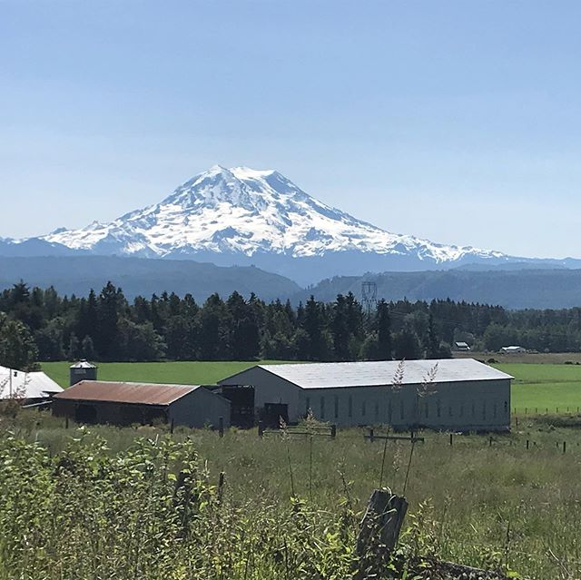 Going to be the first farm in western Washington to put hemp seeds in the ground since prohibition. Saturday we are looking for helpers in Graham. Let me know if you're interested.