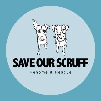 Save Our Scruff Rehome & Rescue